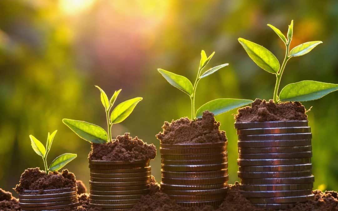 7 Ways Your Spiritual Business Can Grow