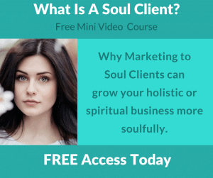 what is an ideal client a soul client