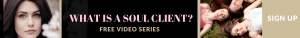 soul client the perfect ideal clients free course